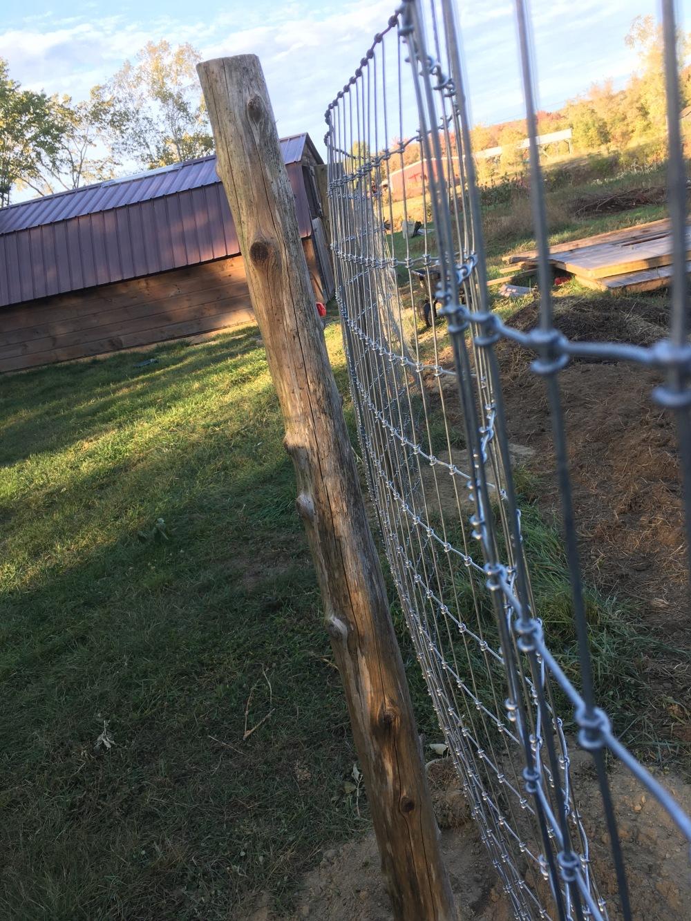 How to Build Alpaca Fencing – Gillis Gardens, LLC